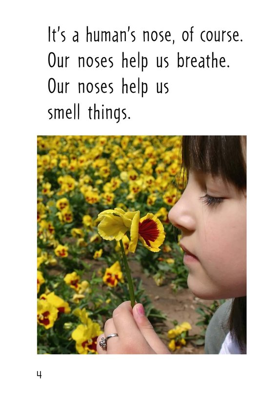 Book Preview For Do You Know This Nose? Page 4