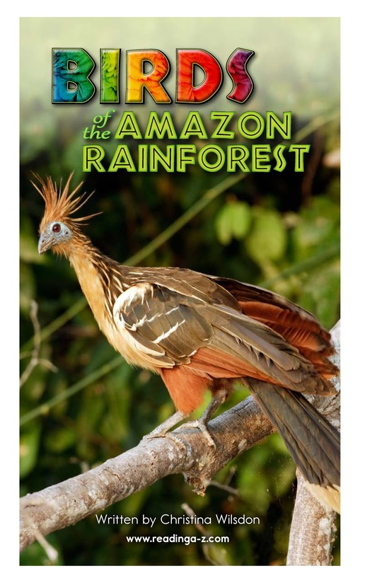 Book Preview For Birds of the Amazon Rainforest Page 2