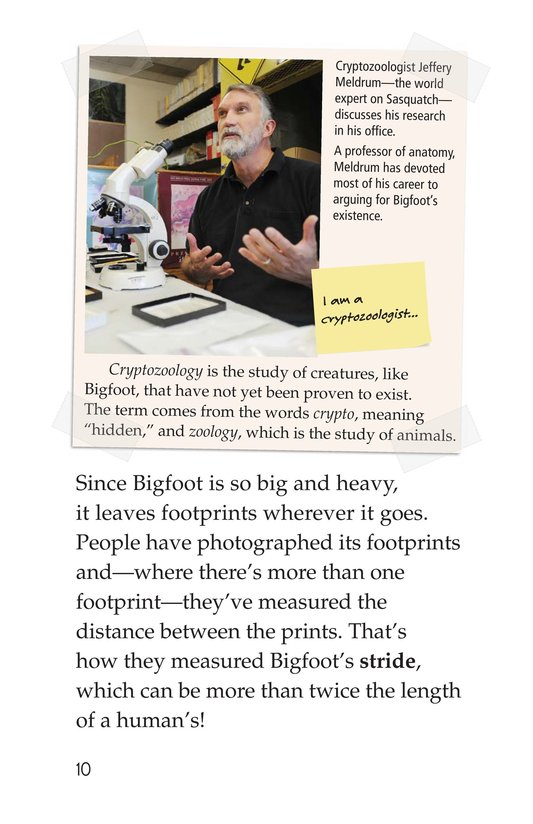 Book Preview For Looking for Bigfoot Page 10