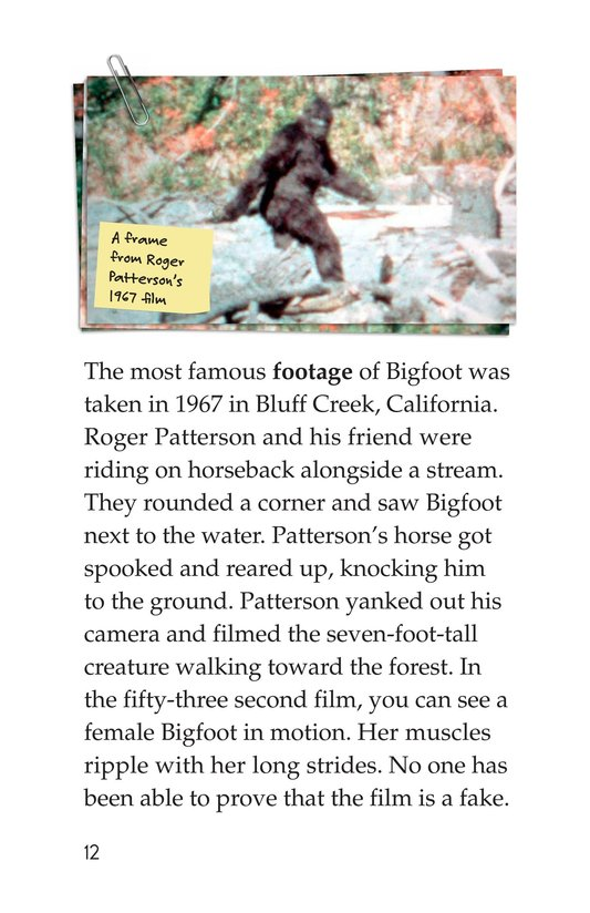 Book Preview For Looking for Bigfoot Page 12