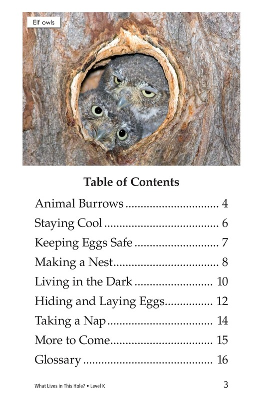 Book Preview For What Lives in This Hole? Page 3