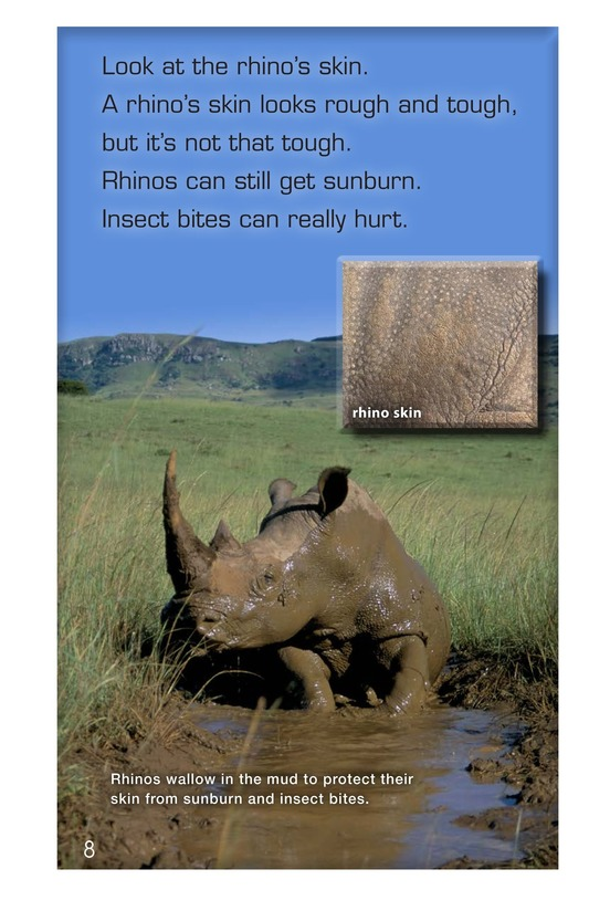 Book Preview For Let's Look at Rhinos Page 8