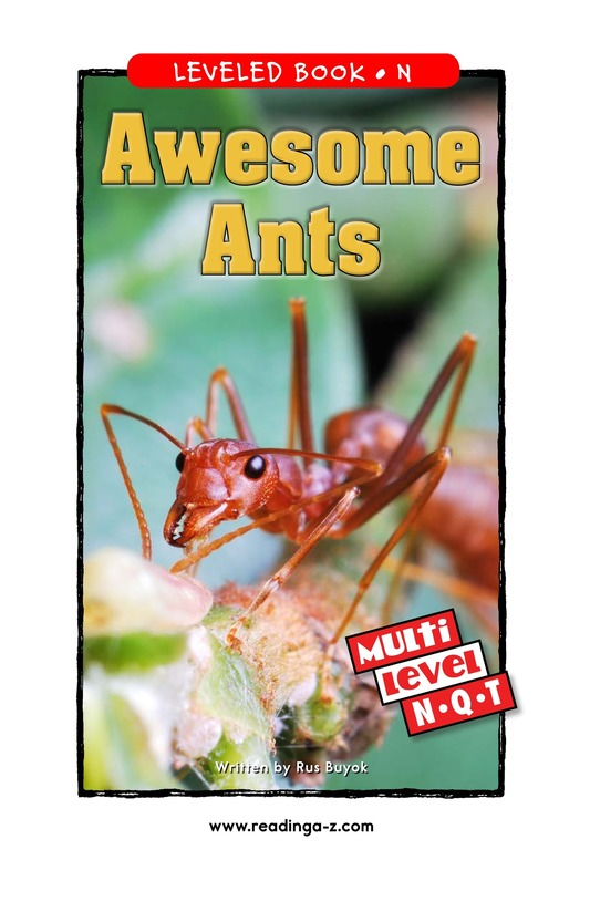 Book Preview For Awesome Ants Page 0