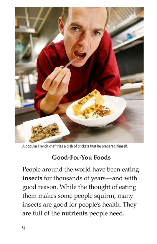 Book Preview For Edible Bugs Page 4