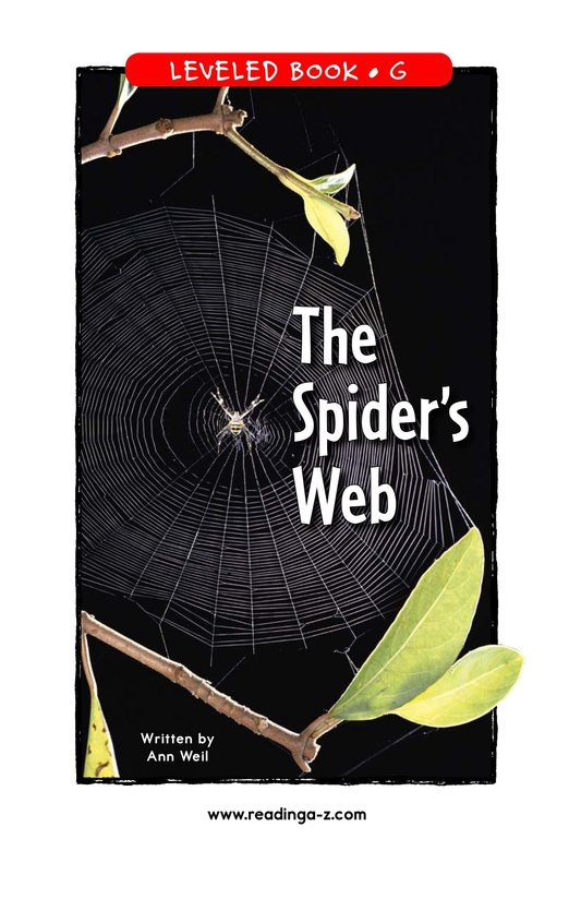 Book Preview For The Spider's Web Page 1