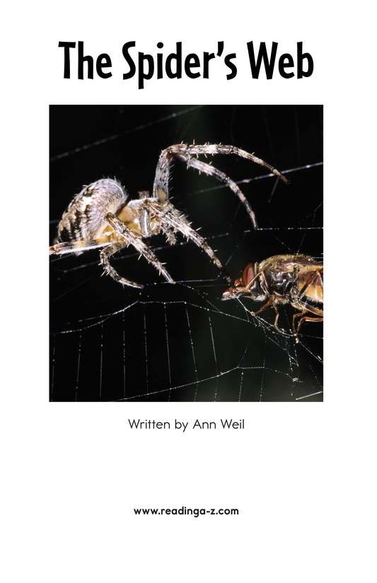 Book Preview For The Spider's Web Page 2