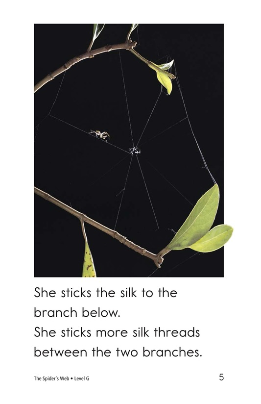 Book Preview For The Spider's Web Page 5