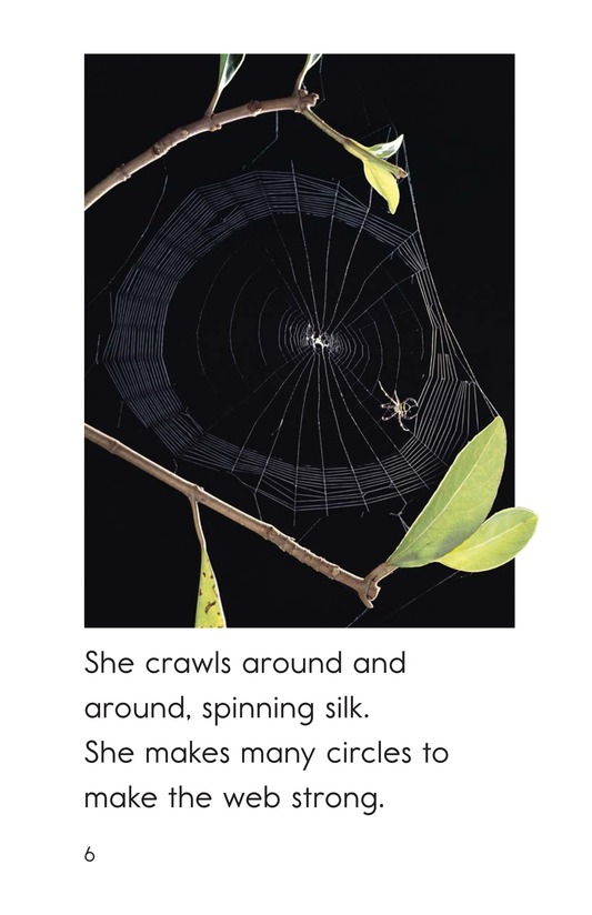 Book Preview For The Spider's Web Page 6