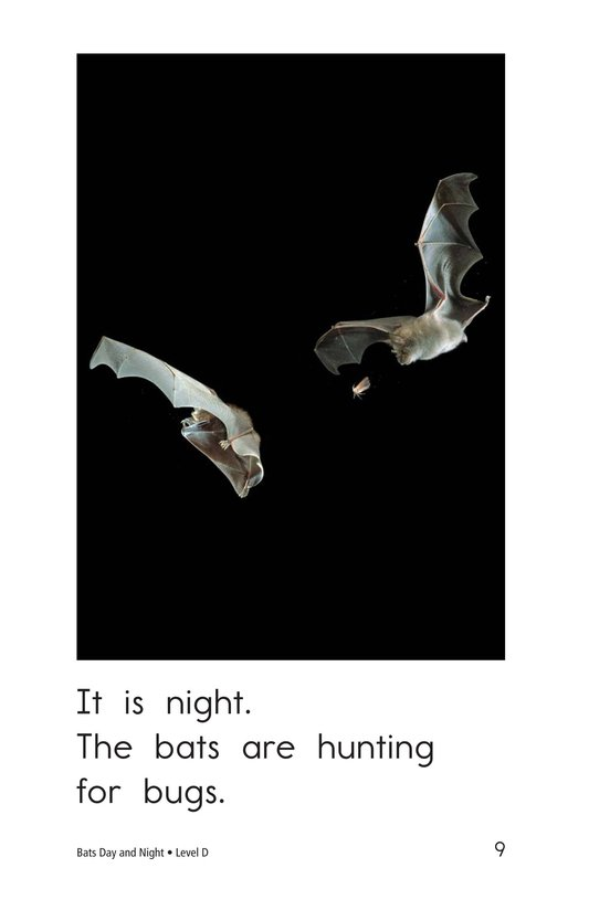 Book Preview For Bats Day and Night Page 9