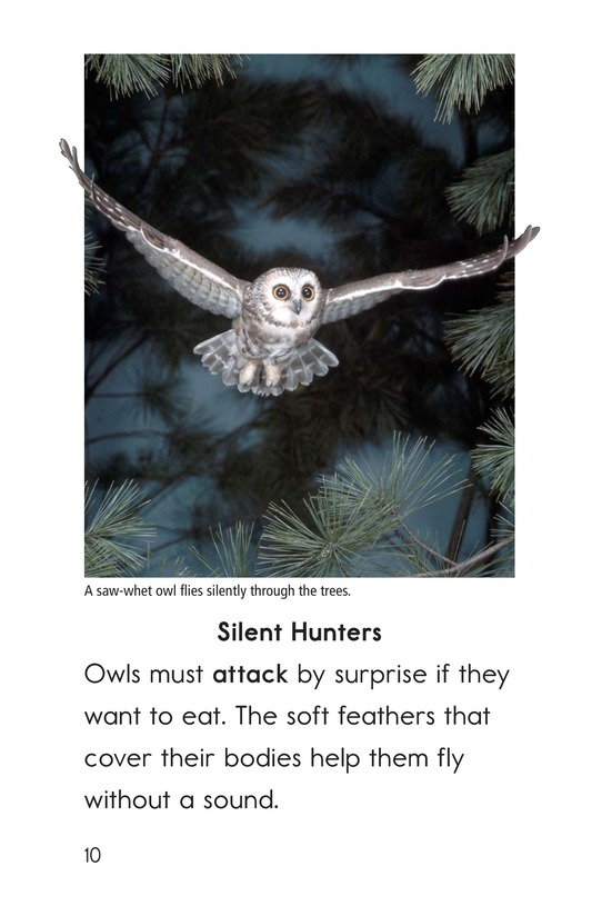 Book Preview For Owls Overhead Page 10