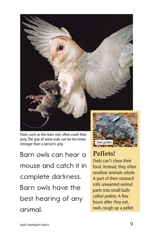 Book Preview For Owls Overhead Page 9