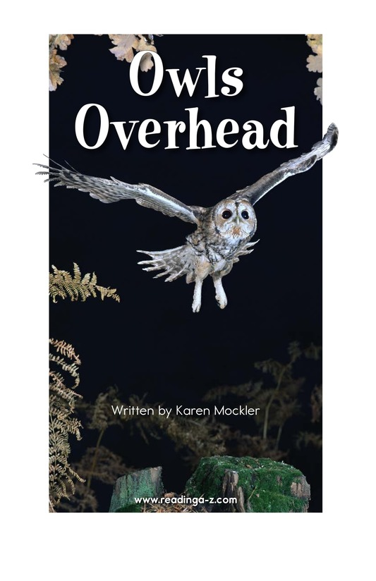 Book Preview For Owls Overhead Page 2