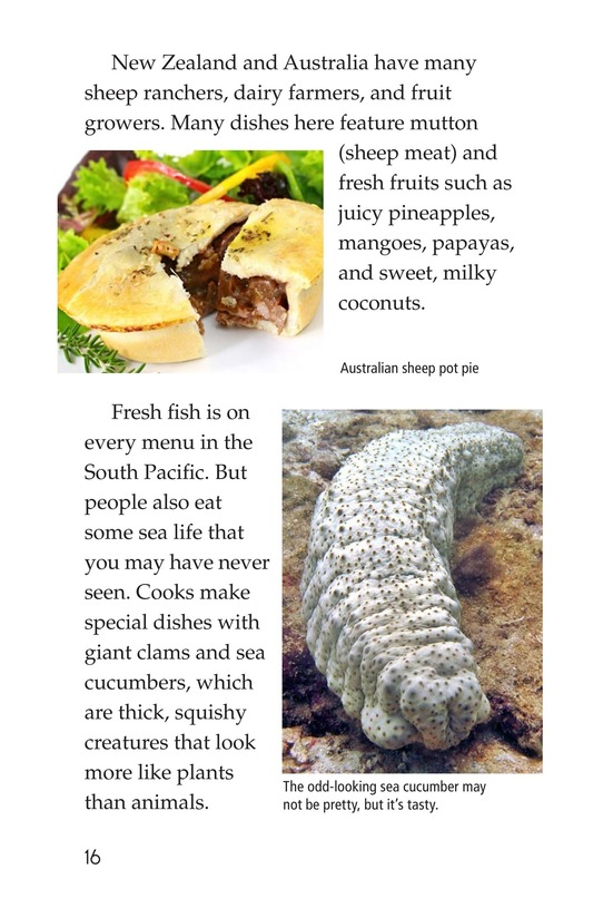 Book Preview For Foods Around the World Page 16