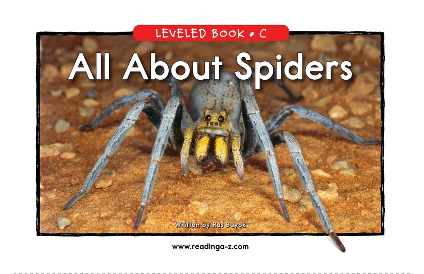 Book Preview For All About Spiders Page 1