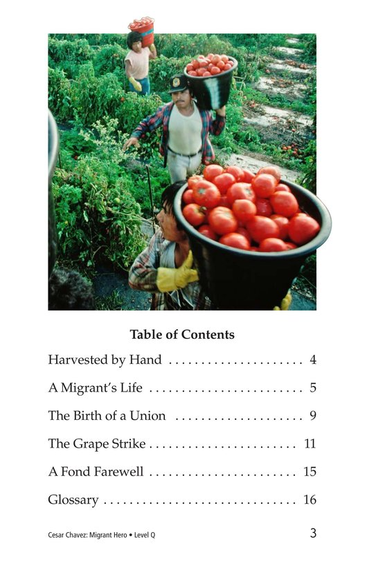 Book Preview For Cesar Chavez: Migrant Hero Page 3