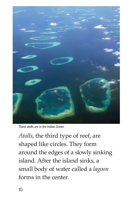 Book Preview For Coral Reefs Page 10