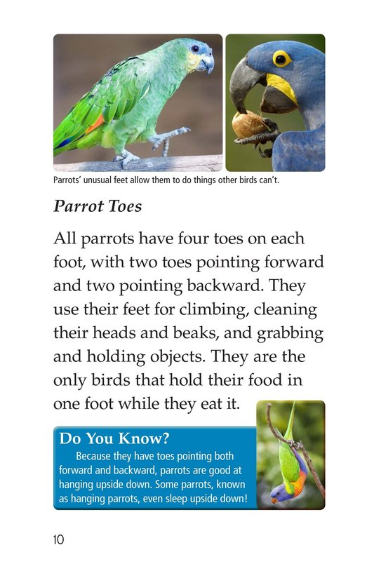 Book Preview For Parrots Page 10