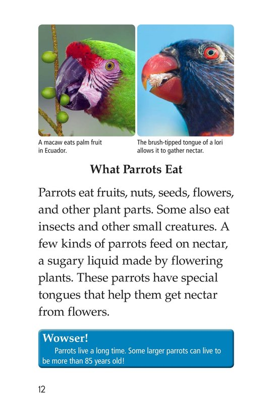 Book Preview For Parrots Page 12