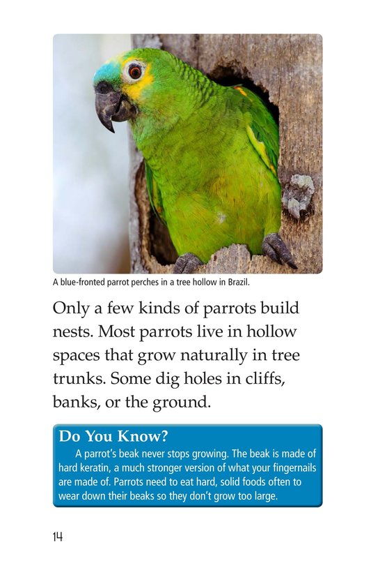 Book Preview For Parrots Page 14