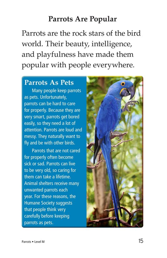 Book Preview For Parrots Page 15