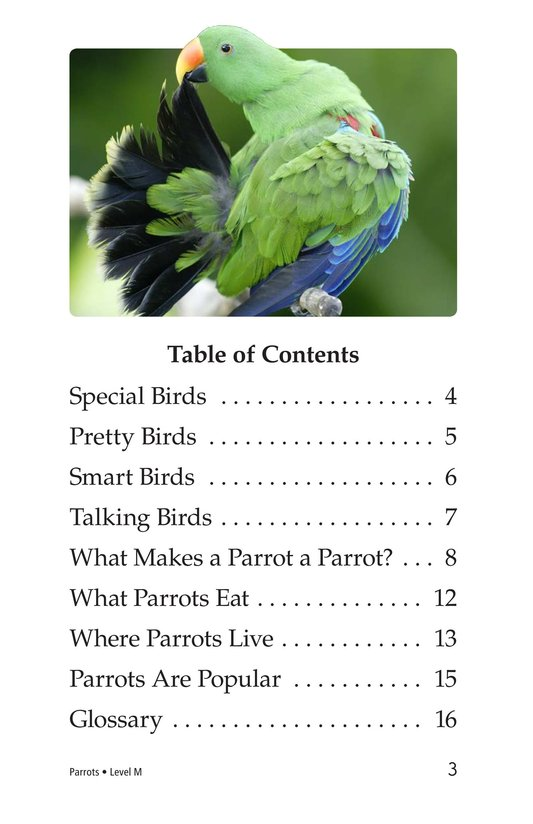 Book Preview For Parrots Page 3