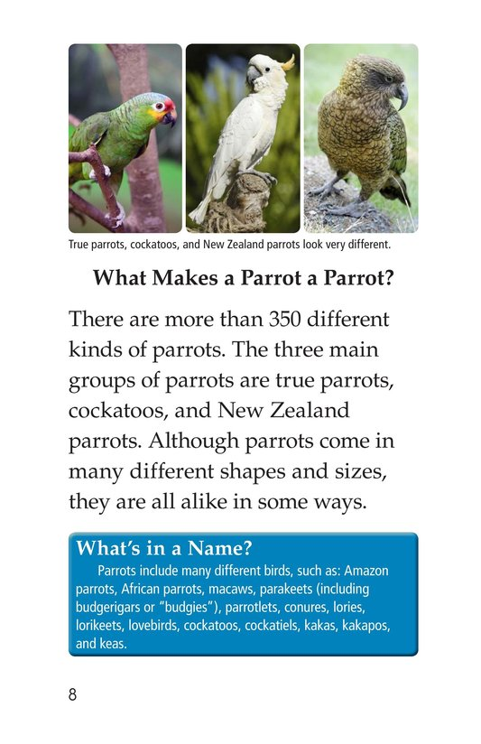 Book Preview For Parrots Page 8