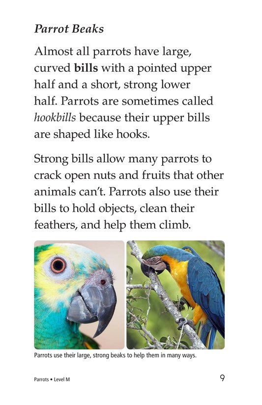 Book Preview For Parrots Page 9