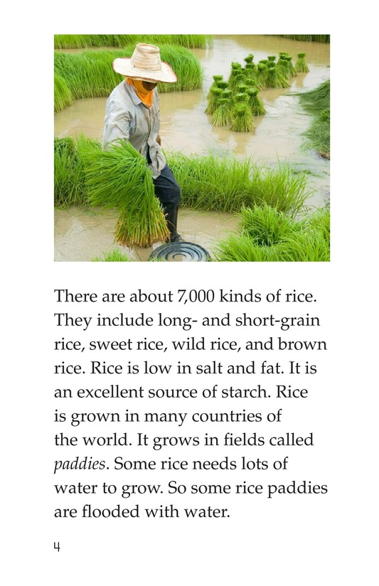 Book Preview For Making Rice Page 4