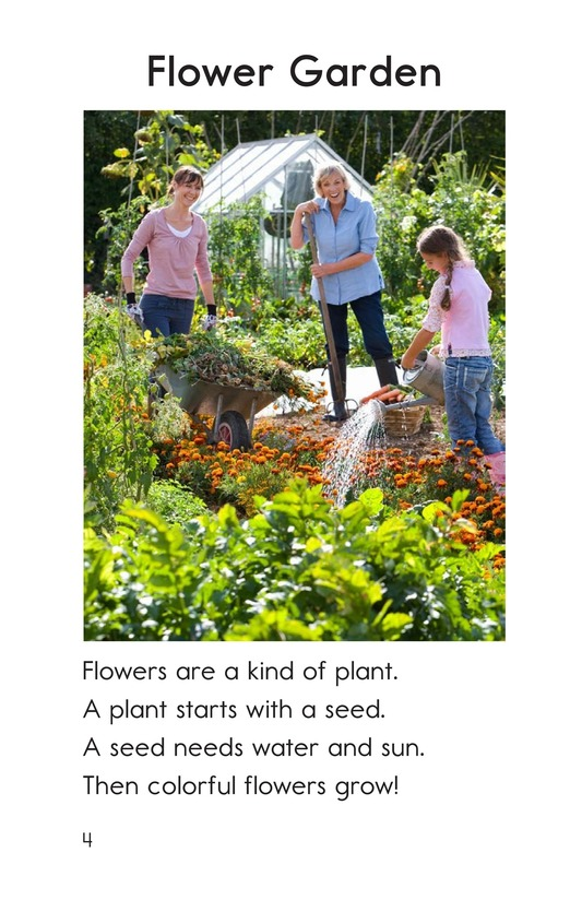 Book Preview For Plants Page 4
