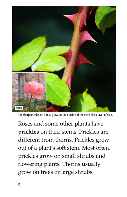 Book Preview For Plant Defenses Page 6