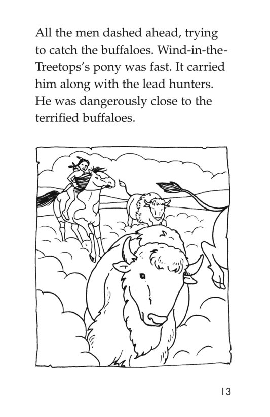 Book Preview For The Buffalo Hunt Page 13