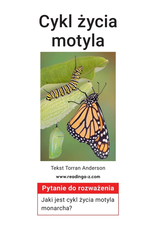 Book Preview For The Butterfly Life Cycle Page 2