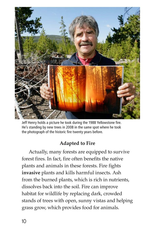 Book Preview For Forests on Fire Page 10