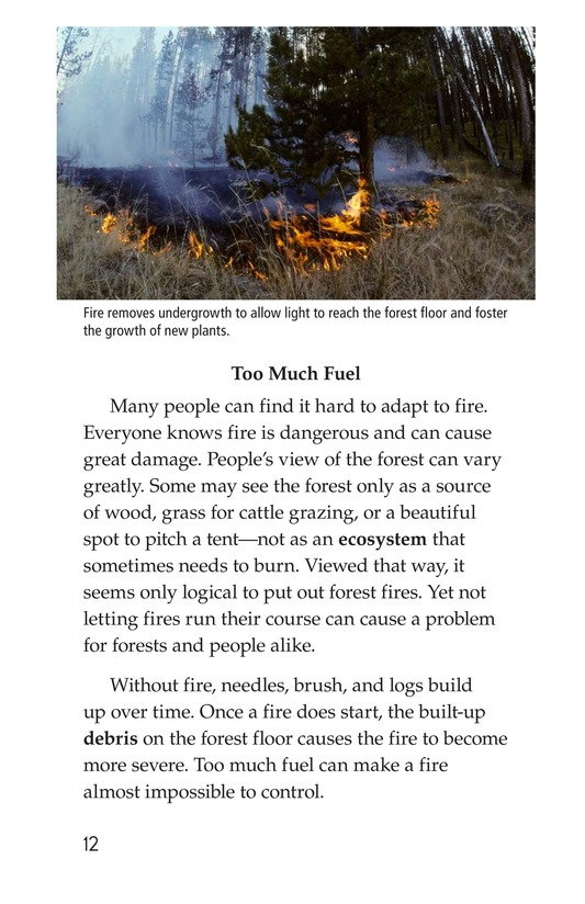 Book Preview For Forests on Fire Page 12