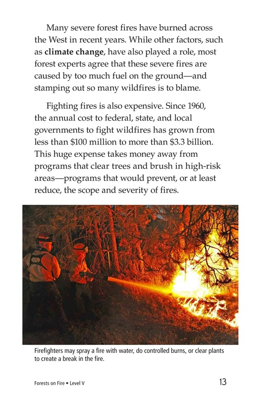 Book Preview For Forests on Fire Page 13