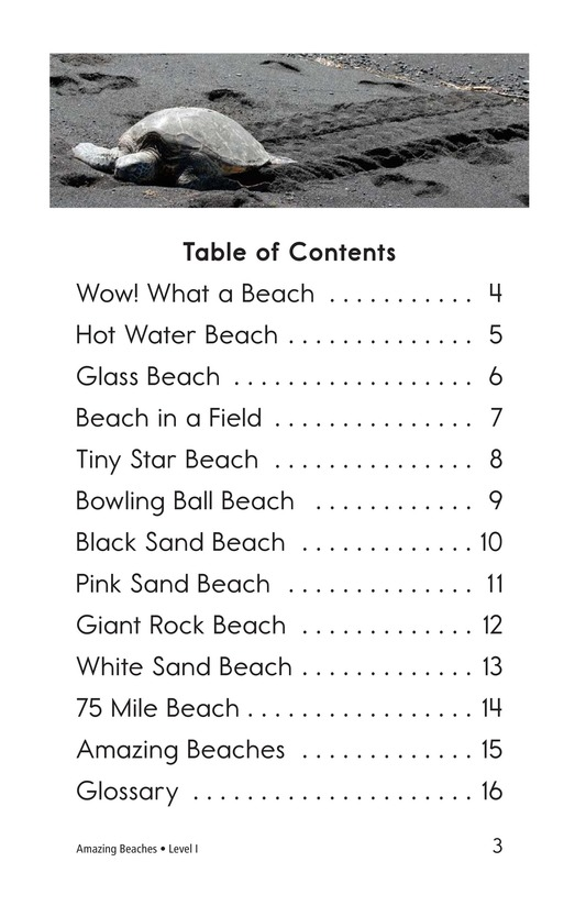 Book Preview For Amazing Beaches Page 3