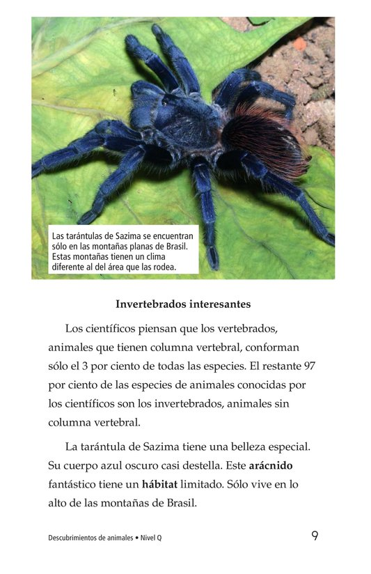 Book Preview For Animal Discoveries Page 9