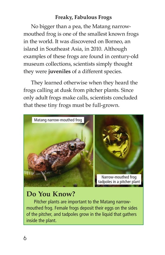 Book Preview For Animal Discoveries Page 6