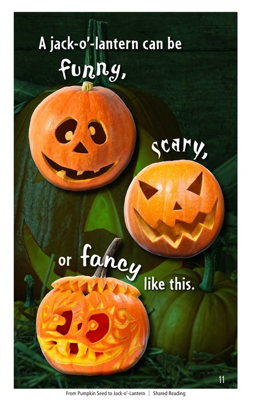 Book Preview For From Pumpkin Seed to Jack-o'-Lantern Page 11