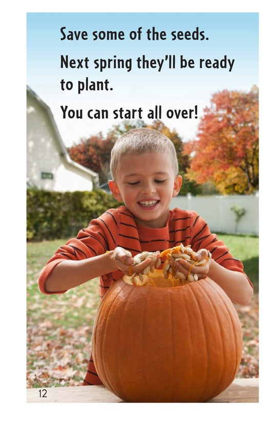 Book Preview For From Pumpkin Seed to Jack-o'-Lantern Page 12