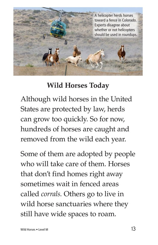 Book Preview For Wild Horses Page 13