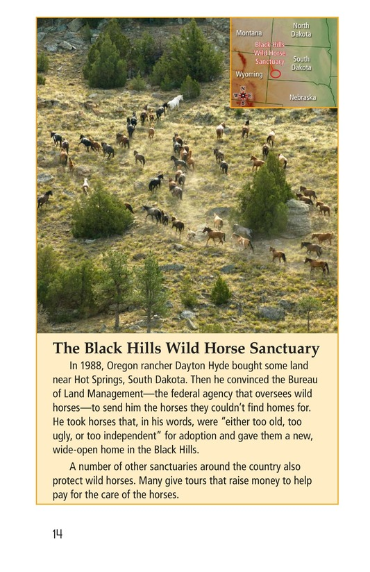 Book Preview For Wild Horses Page 14