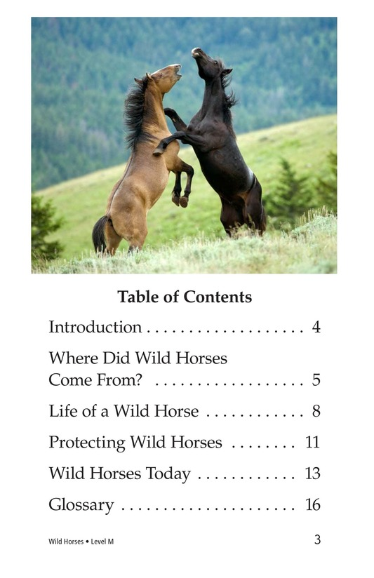 Book Preview For Wild Horses Page 3