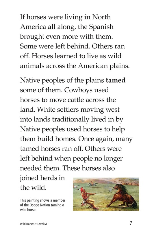 Book Preview For Wild Horses Page 7