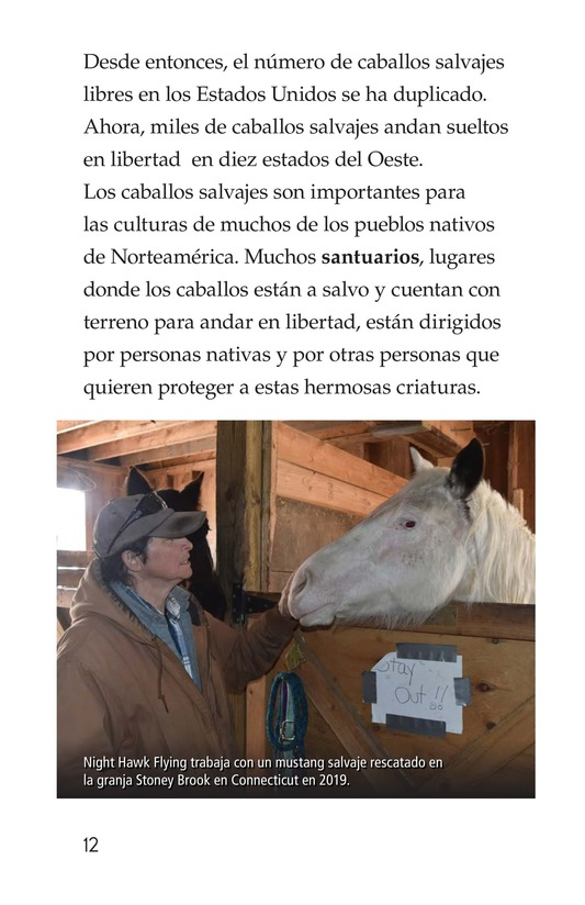 Book Preview For Wild Horses Page 12