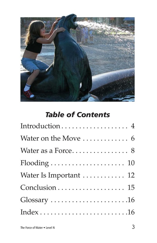 Book Preview For The Force of Water Page 3