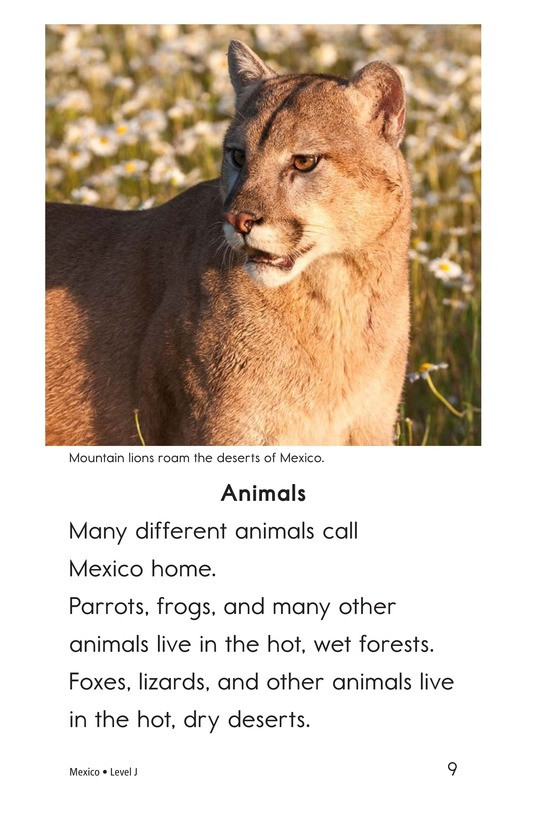 Book Preview For Mexico Page 9
