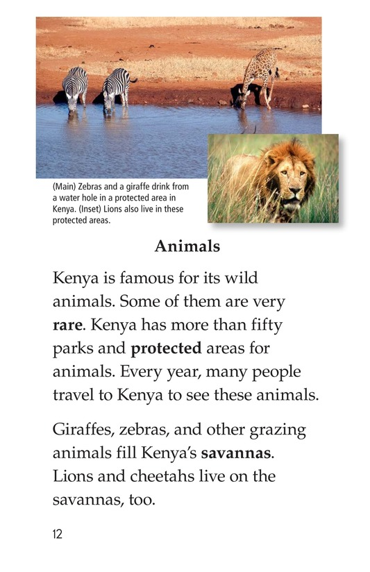 Book Preview For Kenya Page 12