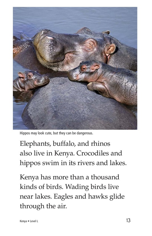 Book Preview For Kenya Page 13