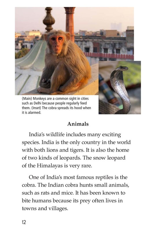 Book Preview For India Page 12